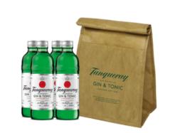 6 Tanqueray Gin & Tonic Premix met gratis unieke coolbag-0